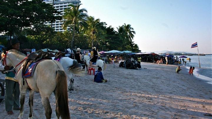 Hua Hin horses